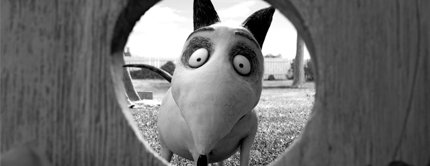 Рецензия на мультфильм «Франкенвини»