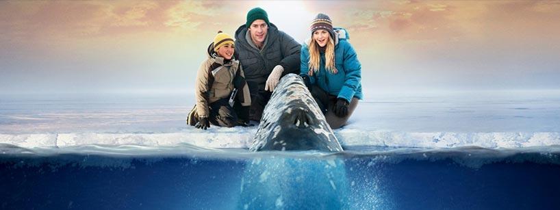 Рецензия на фильм «Все любят китов»